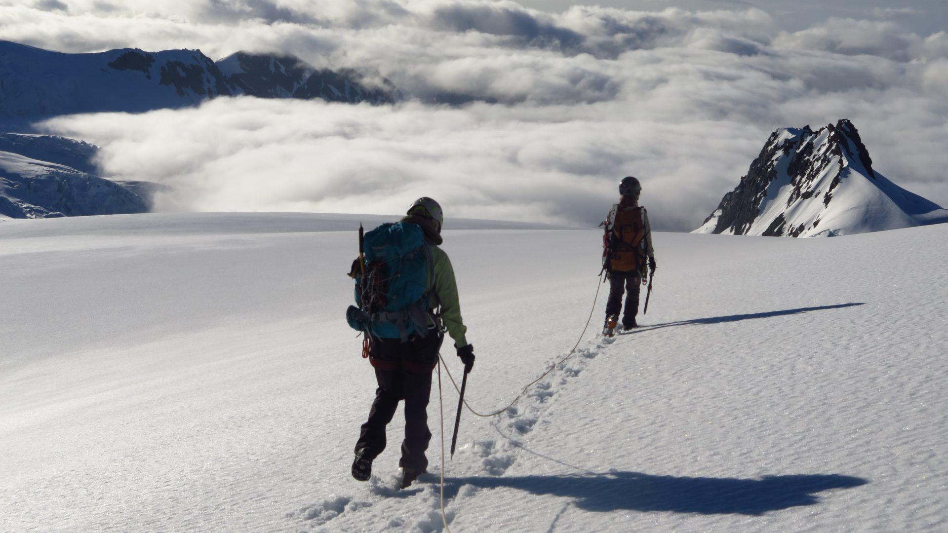 The Fox Glacier  - West Coast NZ