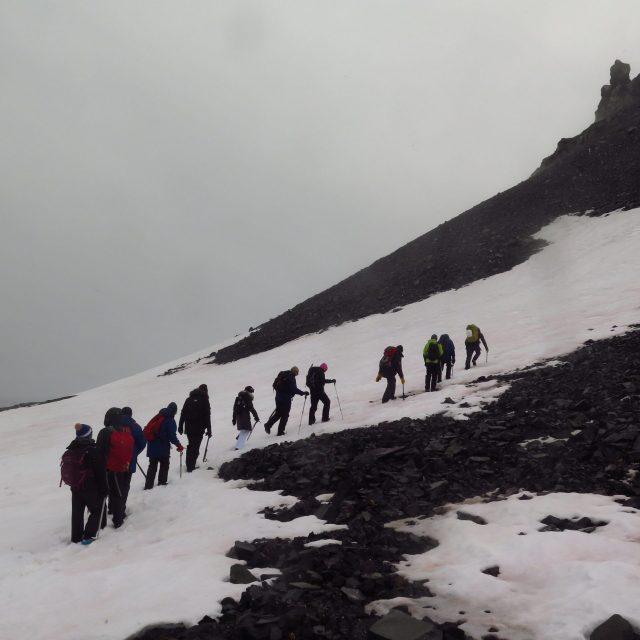 Antarctic Peninsula – Yankee Harbour – 26th December