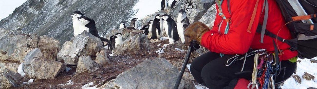 Antarctica 2016-2017